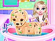 Кучето на Елза